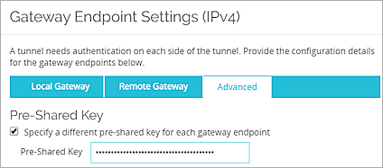 BOVPN Virtual Interface for Static Routing to Amazon Web Services (AWS)