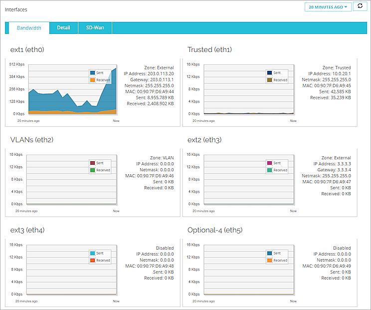 Interface Information and SD-WAN Monitoring