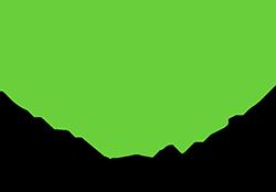 Logotipo: Cylance