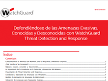 White Paper: Resumo Técnico sobre oTDR