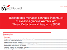 Livre blanc  : Threat Detection and Response (TDR)