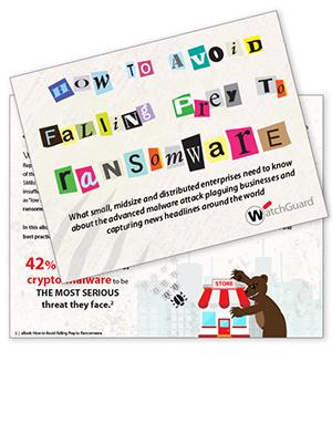 Thumbnail: Ransomware eBook