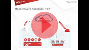 Seminario Web - Cómo protegerte del ransomware