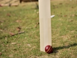 Cricket bat and ball on a lawn